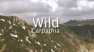Wild Carpathia – Part.1